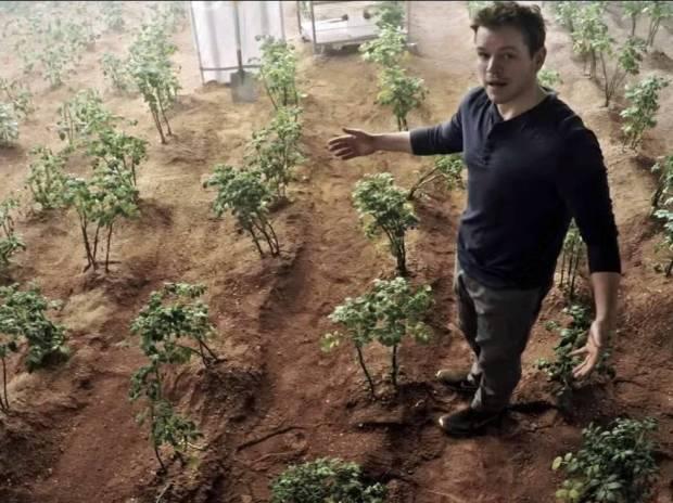Pendant ce temps-là, Matt Damon, seul sur Mars, fait pousser des patates