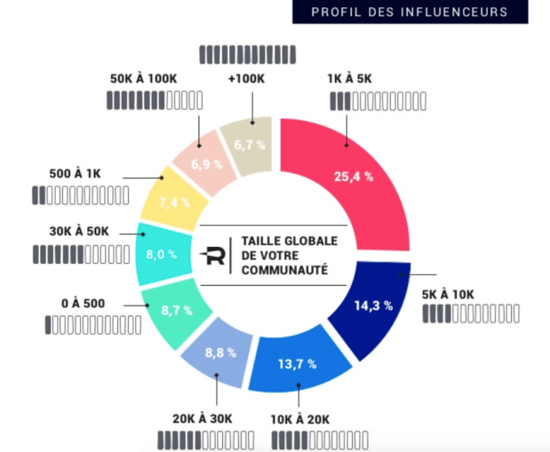 Profil des influenceurs - Etude Reech 2017